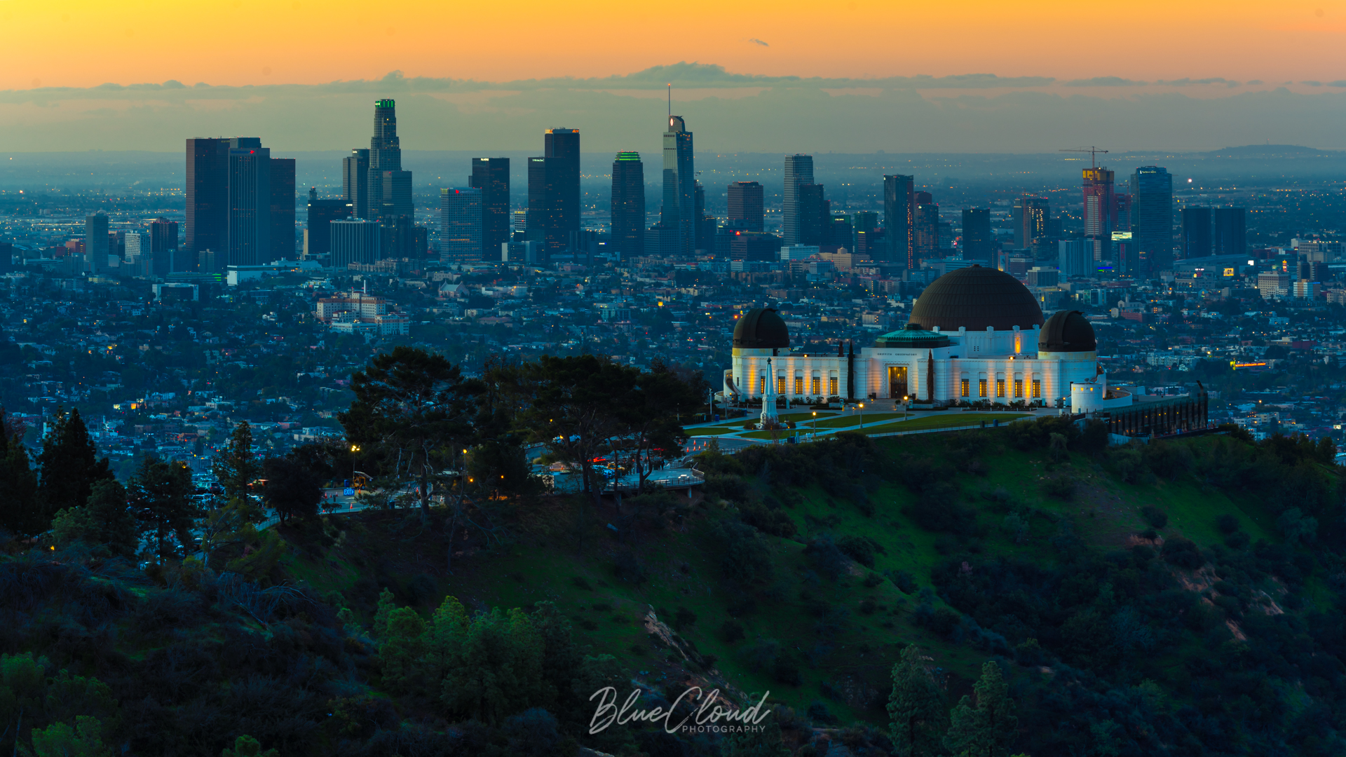Griffith Park - by Matthew Partsch
